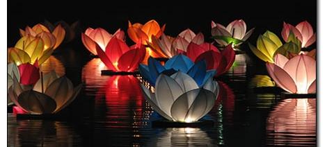 floatinglotusflowers.jpg